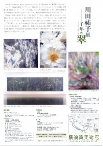 yokosuka-chirashi2020